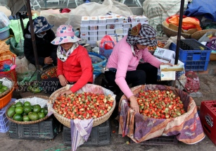 Strawberries are a local specialty in Da Lat