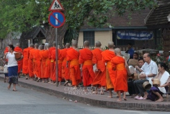 Orange robes in a row