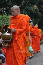 Monks at the alms giving ceremony