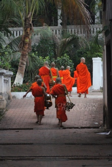 Young monks returning to the school after the alms giving ceremony