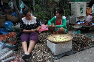 Women and bamboo at the morning market