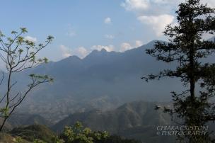 Mountain view in Sa Pa