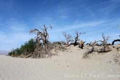 Death Valley desert landscape