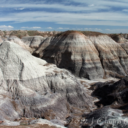 "badlands ""Petrified Forest"" Arizona"
