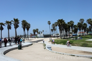 """Venice Beach"" ""Los Angeles"" California"