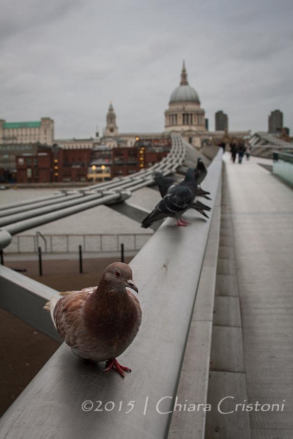 """London """"Millennium Bridge"""""""