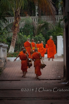 There is always a lot of orange in Luang Prabang, Lao