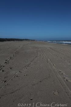 """Uruguay """"Punta del Diablo"""" """"Playa Grande"""""""