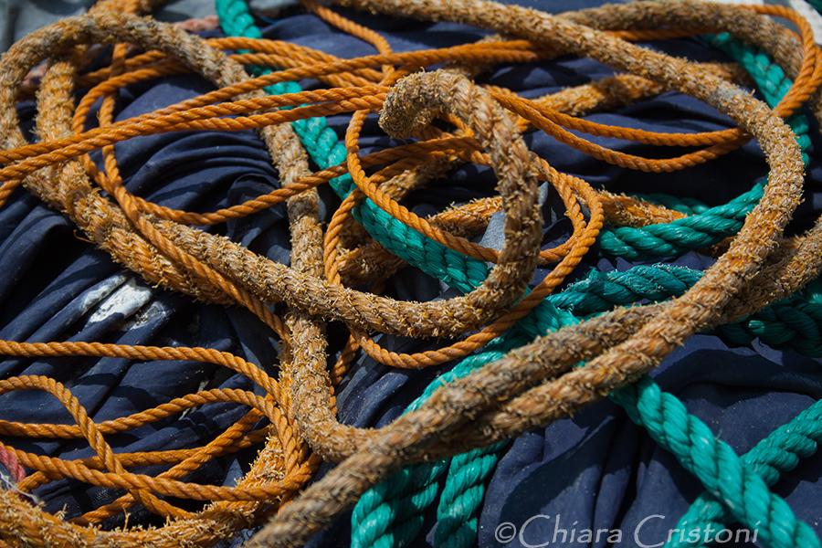 """""""Sri Lanka"""" fishing"""