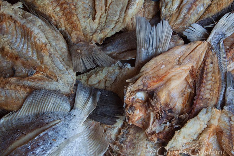 """""""Sri Lanka"""" """"dried fish"""" Kalpitiya"""