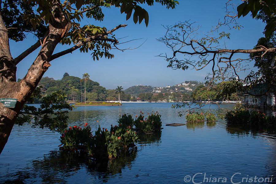 """Sri Lanka"" Kandy lake"