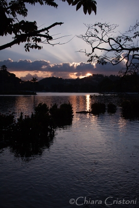 """Sri Lanka"" Kandy lake sunset"