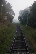 """Sri Lanka"" train journey ""Kandy to Colombo"""