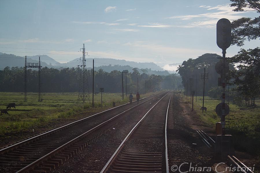 """Sri Lanka"" train journey ""Kandy to Colombo"""