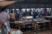 """Sri Lanka"" Negombo Fish Market"