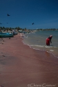 """Sri Lanka"" Negombo Fish Market beach"