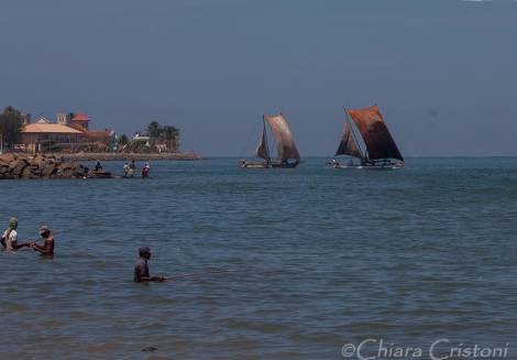 """Sri Lanka"" Negombo Fish Market boats traditional"