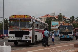 """Sri Lanka"" Colombo bus transport"