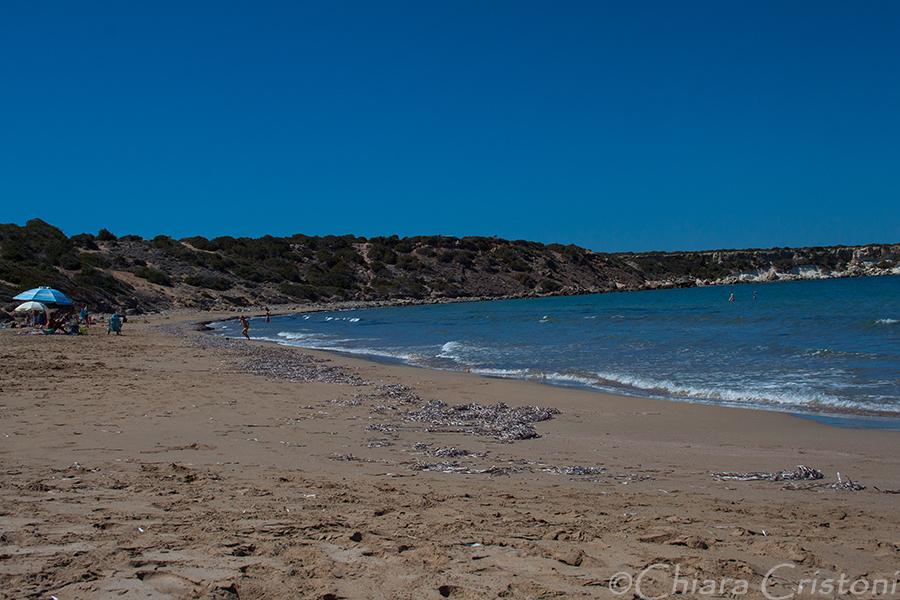 "Cyprus Akamas ""Lara Beach"" coastline wilderness"