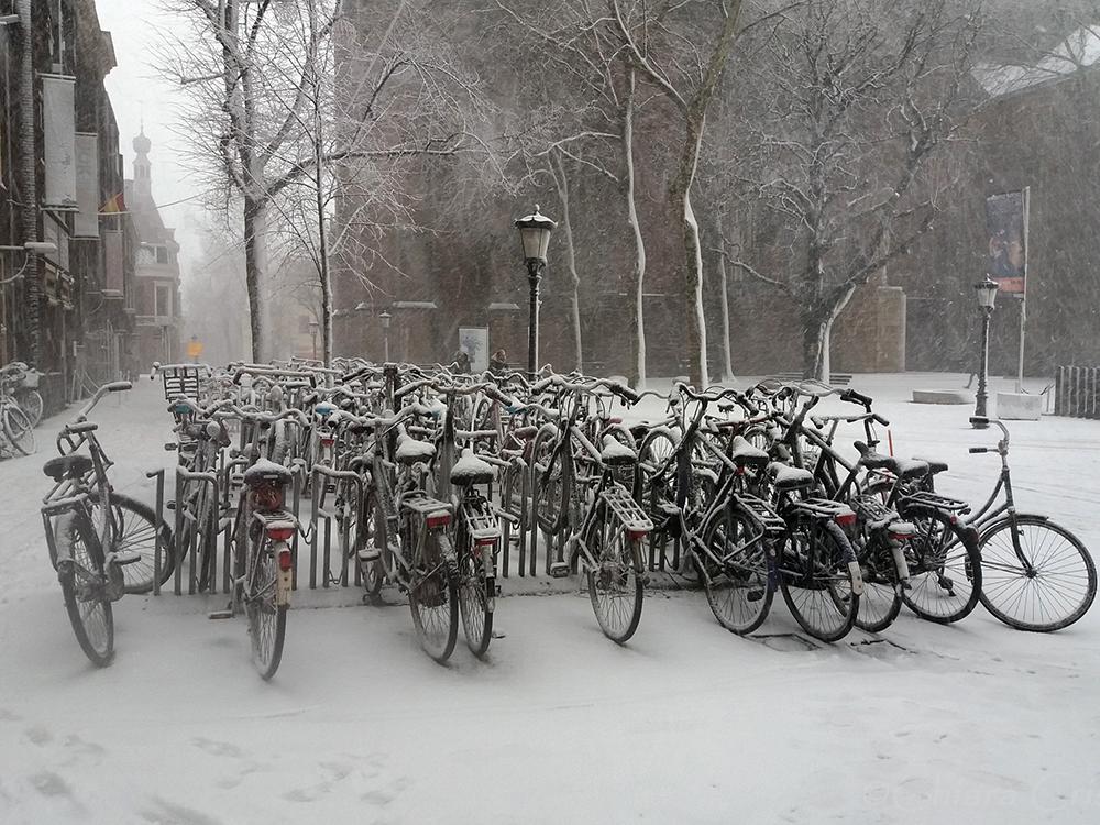 Holland Netherlands Utrecht snow