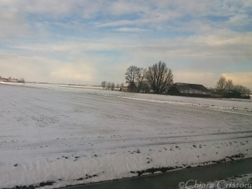 Dutch countryside in the snow