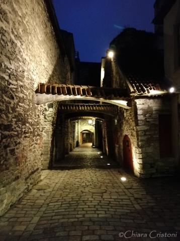 St. Catherine's Passage (Katariina käik)