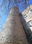 Pikk Hermann tower