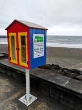 The beach library